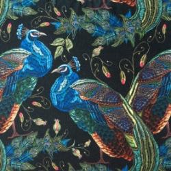 Print DAR02 Bluebird