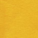 M12 żółty