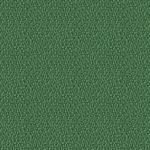 XR159 zielony