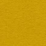 Blazer CUZ2W żółty