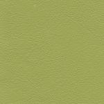 LE13 jasny zielony (pistacjowy)