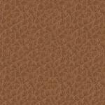 SD09 brązowy