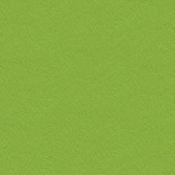 Skóra naturalna S-23 zielony