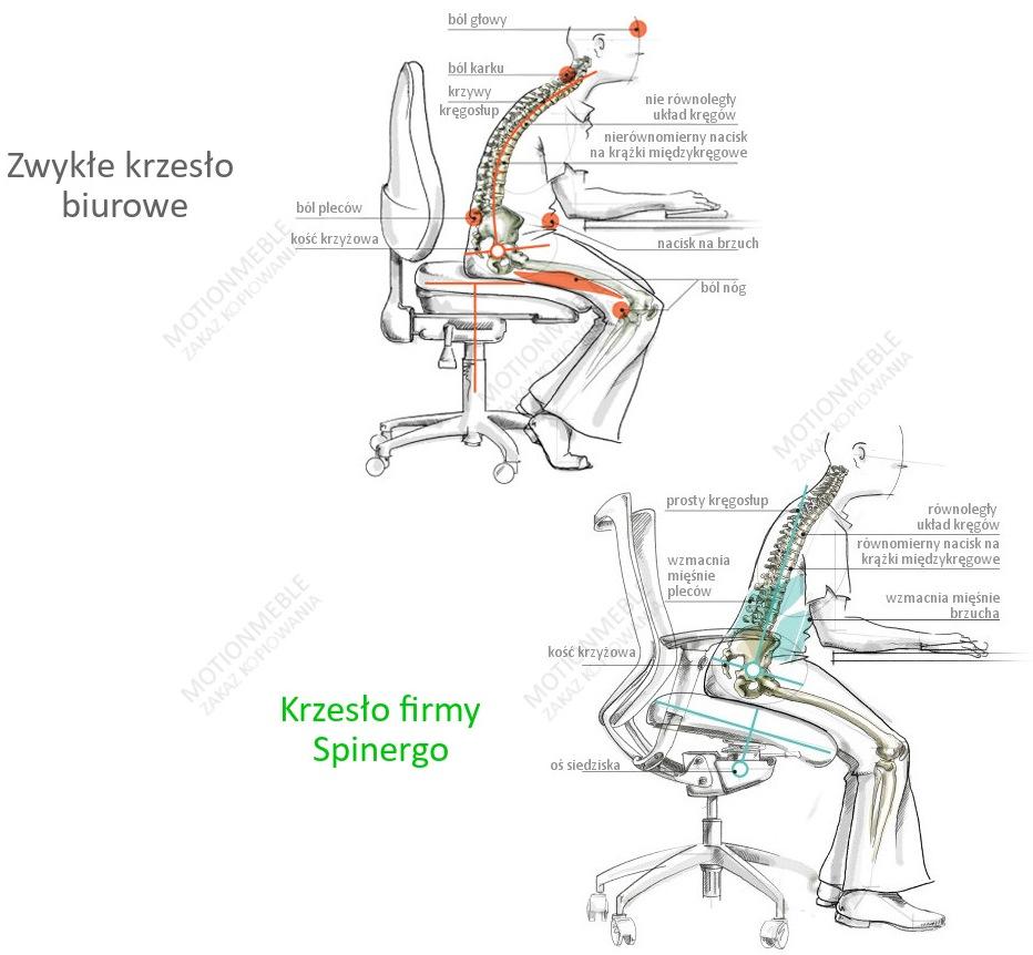 Prawidłowa sylwetka w trakcie pracy siedzącej Spinergo - dawniej Ergonomis